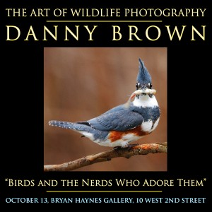Danny Brown-Birds and Nerds poster
